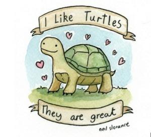 204240-i-like-turtles